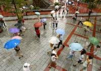 """天气预报丨""""火力""""全消 未来三天都是雨"""