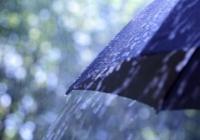 晨间天气 | 今天上午下午都是雨 目前17℃左右