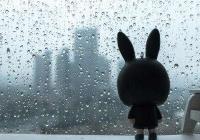晨间天气丨出门记得带把伞,今天有雨,现在气温15℃左右