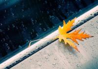 晨间天气 | 今日阴天为主,目前小雨,8℃左右